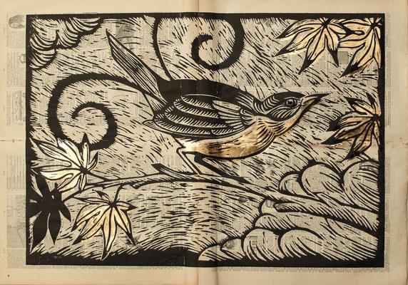 Gravure sur bois - bois gravé : Oiseau lyre 45x60  -Papier encyclopedie 1901- feuille d'or - 220€