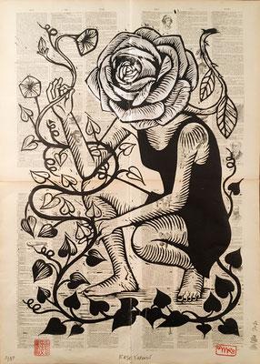 Rose d'argent papier encyclopedie 50x70 280€ mattroussel_gravure_sur_bois