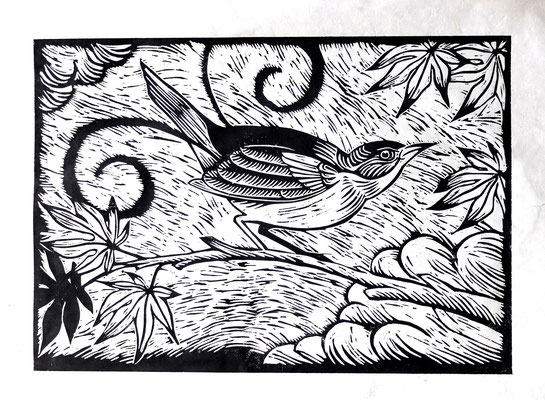 Gravure sur bois - bois gravé : Oiseau lyre 45x60-Papier blanc vinci -180€