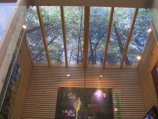 Innenansicht Ausstellungspavillon mit Glasdach