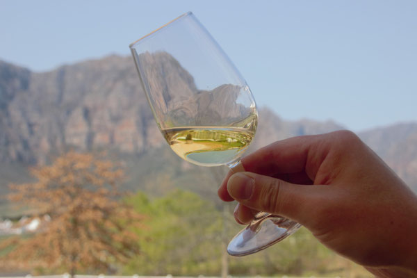 Weingut Zorgvliet, Südafrika