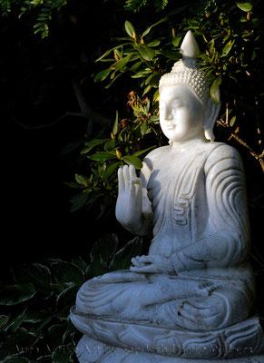 Marmor Buddha 40x55 cm