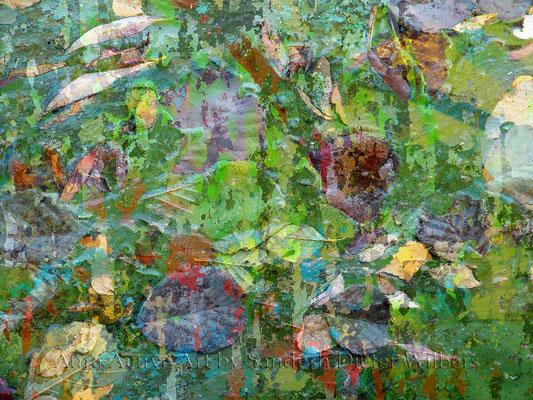 004 Natur & Kunst H  80x60 cm