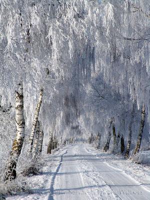Winterzauber in Davensberg 60x80 cm