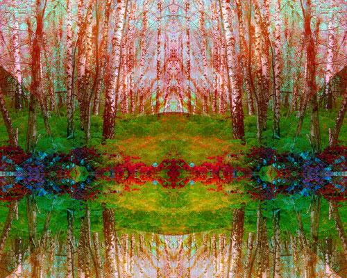 005 Birken in Amaryllis H  100x80 cm
