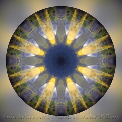 Golden Koi Mandala - 3 n 60x60 cm