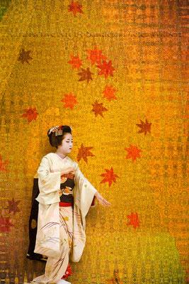 Geisha Gesture D 40x60 cm