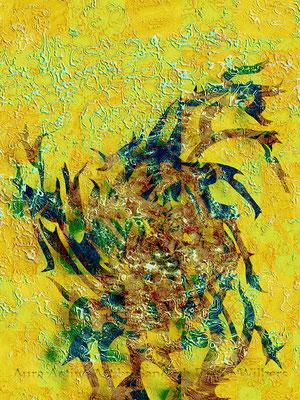 Hydra - b1 FB 2015 80x60 cm