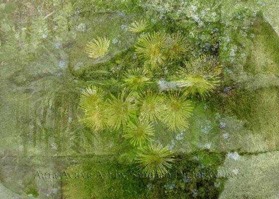 Gelbe Blüten in Backsteingrün 50x70 cm