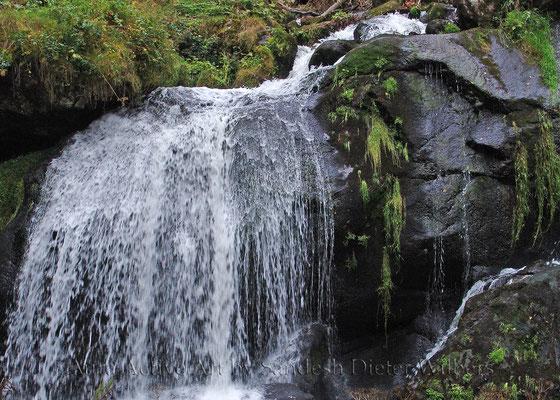 Franz-Josef schläft unterm Wasserfall 70x50 cm