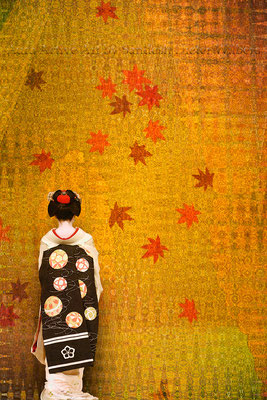 Geisha Gesture C 40x60 cm