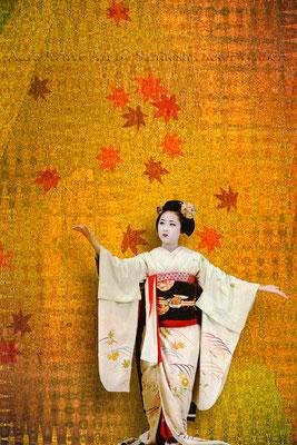 Geisha Gesture E 40x60 cm