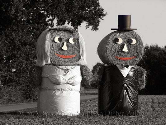 Just married - extra 2 VU 2016  80x60 cm