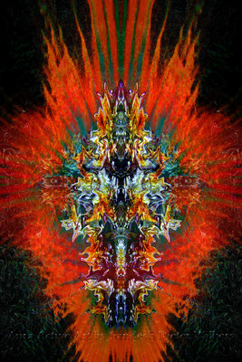 036 Feuerdrache 2015  60x90 cm
