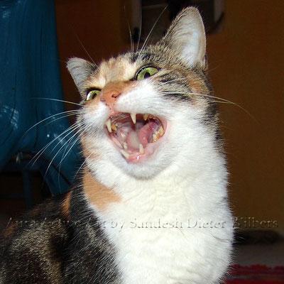 "Louisa: ""Selber Klappe!""  45x45 cm"