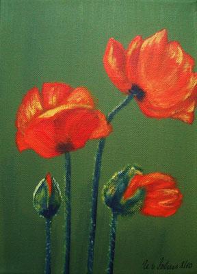 Mohnblüten 8-10, Acryl auf LW/KR, 18 x 24 cm