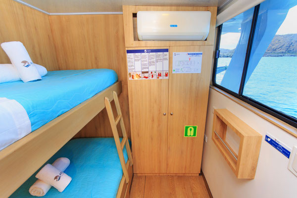 Twin bed room cabin of the vessel Galapagos Dive Liveaboard, Galapagos Shark Diving