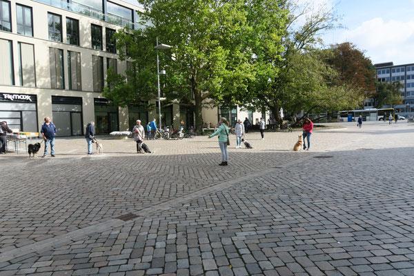 Das Training findet auch in der Stadt statt.