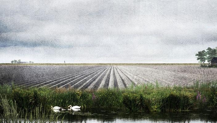 Digital collage Marne landscape for Flux landscape architecture