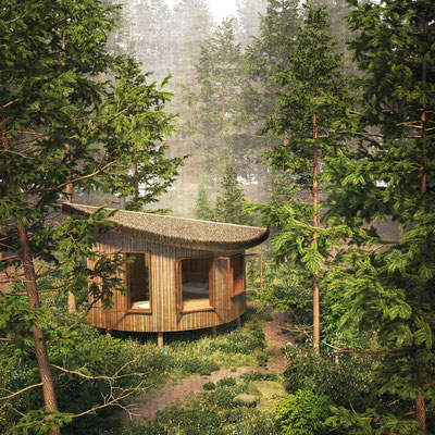 Forest cabin exterior rendering in summer for Ozolini