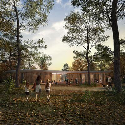 Pavillion evening render forest, for TomDavid Architects