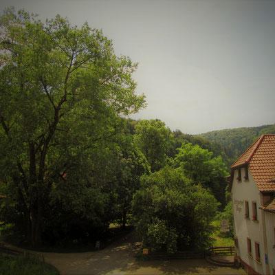 Einen Ausblick in das fränkische Ramstertal - Landgasthof Bieger