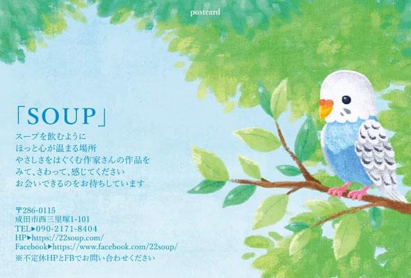 幸せの青い鳥「ふーちゃん」