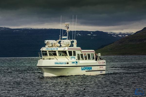 Das Schnellboot fährt ungefähr 45 MInuten bis Zur Insel Vigur.