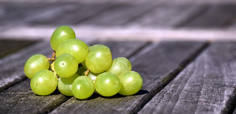 Wenn wir jung sind, sind unsere Zellen wie Weintrauben...