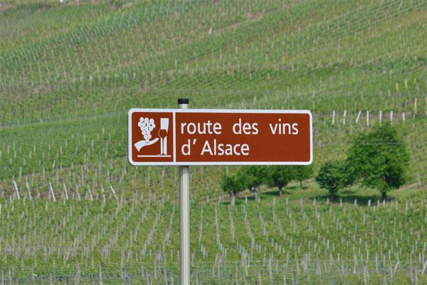 Route de vin