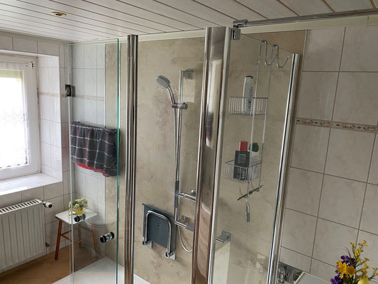 Wandverkleidung Renodeco im Duschbereich
