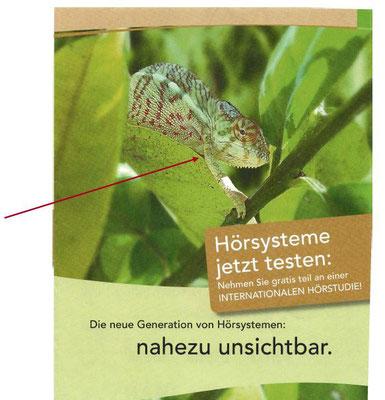Alter Hansaton-Flyer !!!