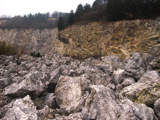 Feld aus großen Felsbrocken