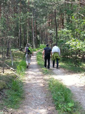 ... Waldspaziergang ...