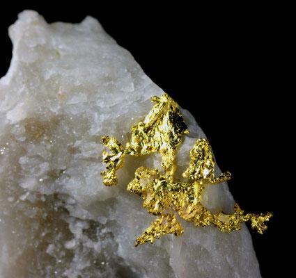 Kristallines Gold auf Quarzmatrix