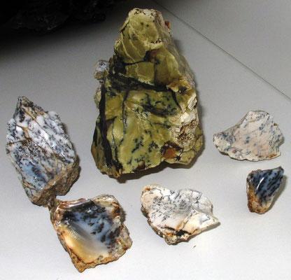 Opale in der Vitrine