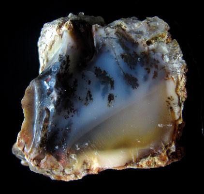 Opal mit Dendriten, Dobersberg, Waldviertel, Niederösterreich