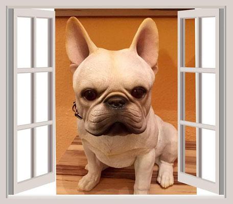 Das ist Oskar ,er hat auch ein neues Zuhause gefunden ,durch unsere Losaktion:-)