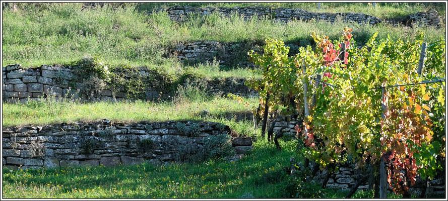 alte Trockenmauern
