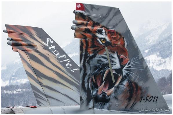 der neue Tiger
