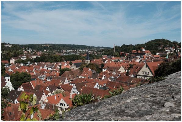 Blick auf Tübingen
