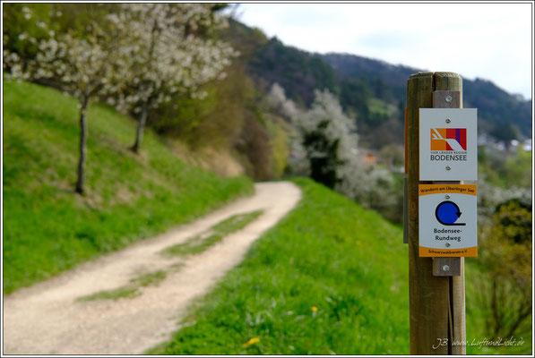 ... führt ein schöne Wanderung auf dem Blütenweg ...