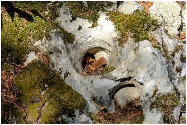 eine kleine Albhöhle