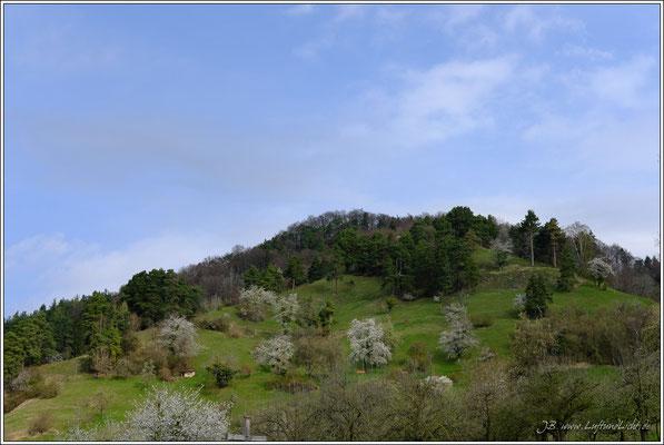Auf der rechten Seite die Sipplinger Steiluferlandschaft ...
