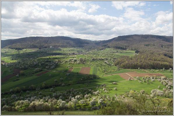 Blick nach Süden auf den Schafbuckel und das Randecker Maar