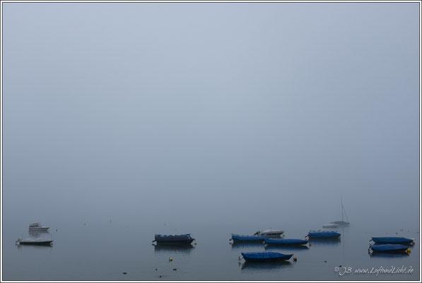 Radolfzell, noch im Nebel