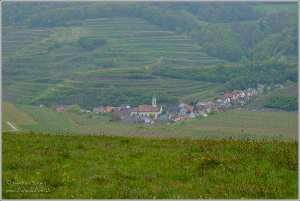 Blick auf Schelingen