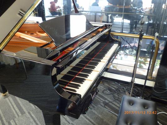 自動演奏のピアノがあり勝手に演奏していたが、音が最悪!いままででこんなに音の悪いpianoは見た事がない。