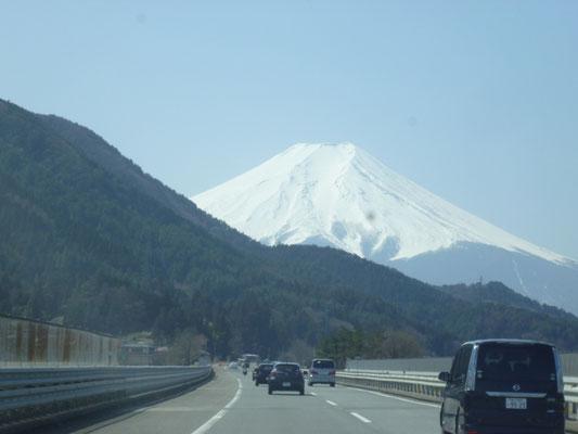 行きの車窓から。早春の富士。やっぱりおおきい。