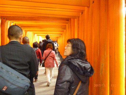 『伏見稲荷神社』 千本鳥居